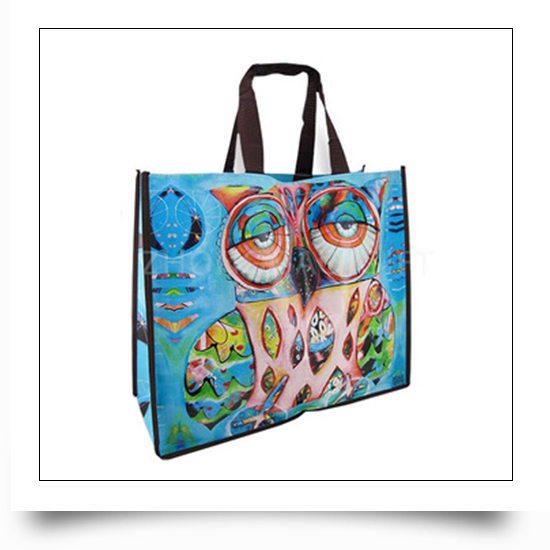 Promotional Use PP Woven Bag